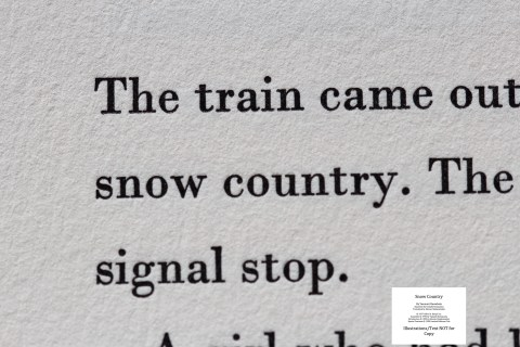 Snow Country, Limited Editions Club, Macro of Sample Text #2