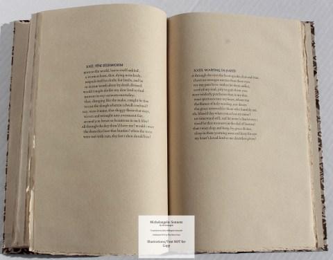 Michelangelo: Sonnets, Allen Press, Sample Text #4