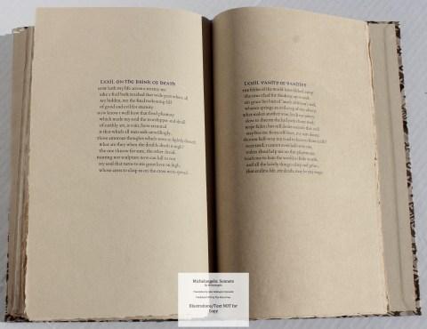 Michelangelo: Sonnets, Allen Press, Sample Text #6