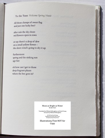 Moon as Bright as Water, Chester River Press, Sample Text #3