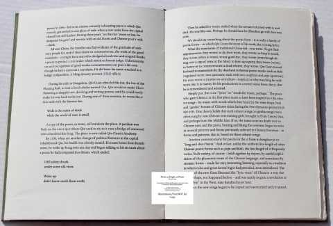 Moon as Bright as Water, Chester River Press, Sample Text #2 (Introduction)
