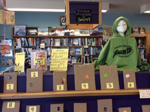 Guess the Title Contest display 2 - Homer Bookstore, Homer, AK