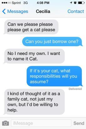 CatBeggar
