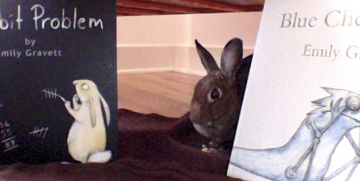 "Remembering ""Bean"" on International Rabbit Day"