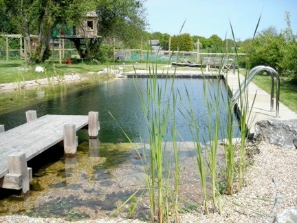 http://www.babble.com/home/10-eco-friendly-natural-swimming-pools/?pid=1029#slideshow