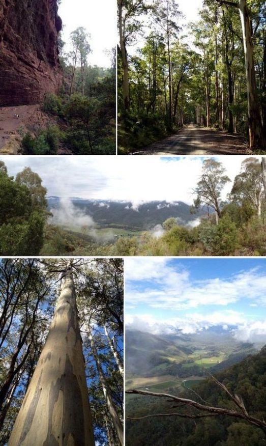 King-Valley-Victoria-11