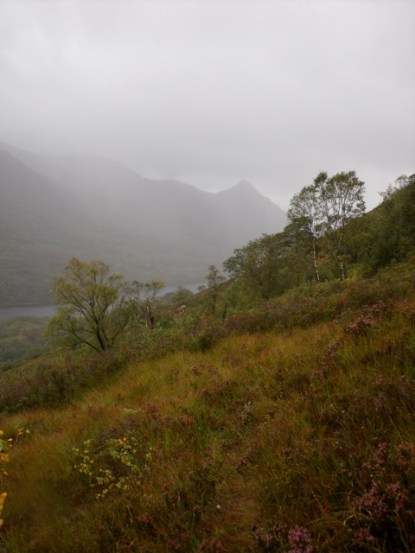 View towards Glencoe