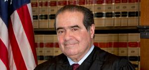 Scalia 300