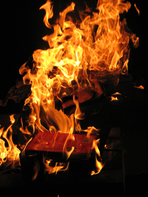 Burning Books 300