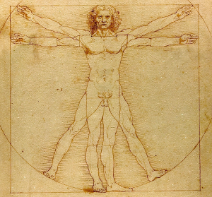 Leonardo da Vinci's Vitruvius Man, or The Universal Man.