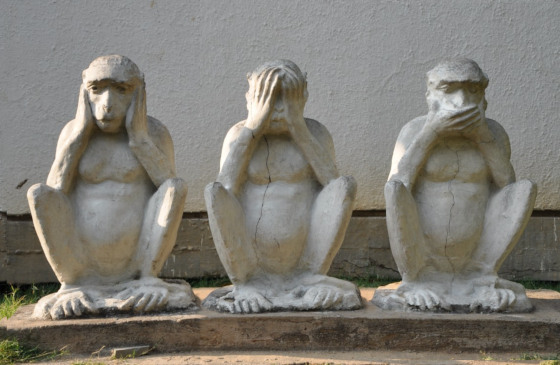 Stupidity of hear no evil, see no evil, speak no evil.