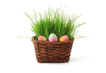 basket-celebration-decoration-easter-41346