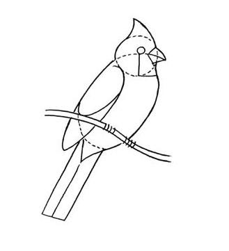 02. Как нарисовать птицу на ветке