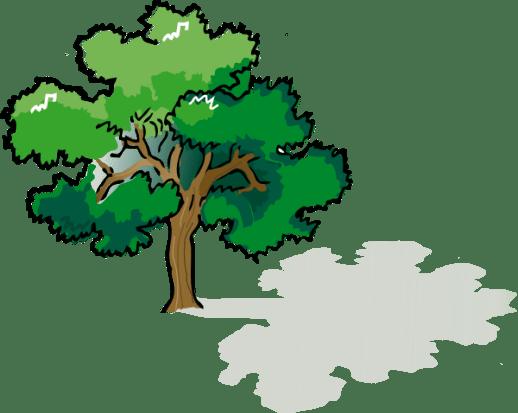 Tree Shade Clipart