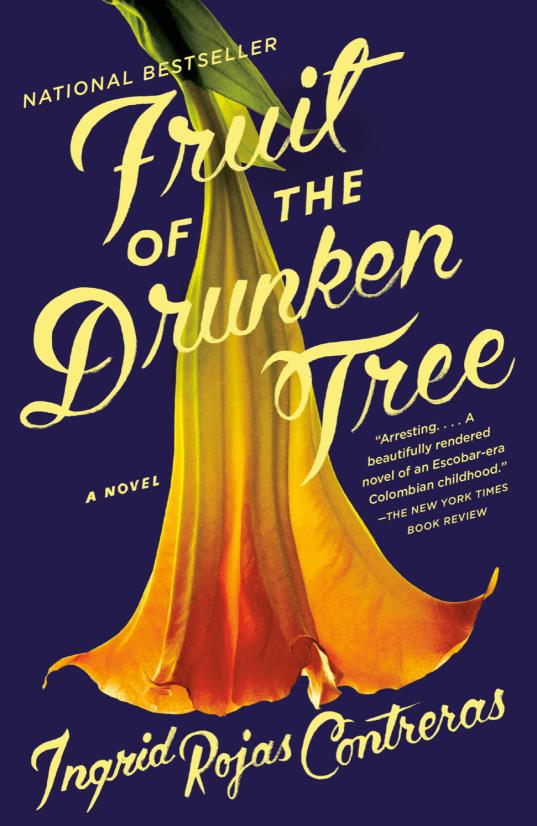 Book Cover for Fruit of the Drunken Tree