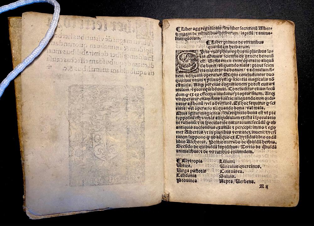 Page of Liber secretorum. Alberti Magni, 1510