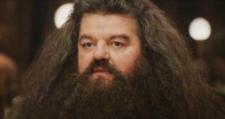 Rubeus_Hagrid
