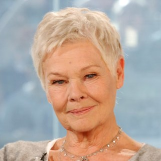 Judi Dench's casting is the biggest surprise, as it's a major departure from the book. She'll be playing Commander Julius Root — a male character in the novels. Dench won an Oscar for her role as Queen Elizabeth in 'Shakespeare in Love' and is known for her work in the James Bond films. (Photo Credit: Biography)