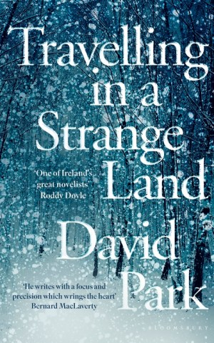 Travelling in a Strange Land by David Park