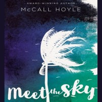 CD cover of Meet the Sky,  by McCall Hoyle | Read by Morgan Fairbanks Published by Blink | recommended on BooksYALove.com