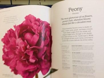 Book Time, book reviews, DK Books, The Flower Book, gardening, garden, English country garden, flower arrangement, Rachel Siegfried, flowers, in season, flower arranging, DK, how to
