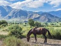 Экспедиция на северо-запад Аргентины
