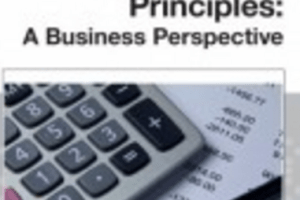 Accounting Principles A Business Perspective