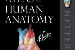 Atlas of Human Anatomy 7TH edition pdf