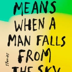 What It Means When a Man Falls from the Sky PDF