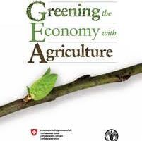 Greening the Economy with Agriculture pdf