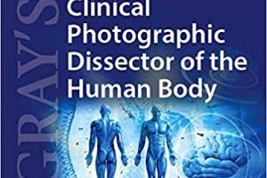 Gray's Clinical Photographic Dissector of the Human Body pdf