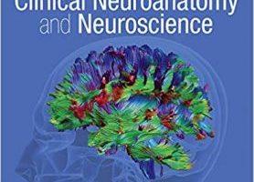 Fitzgeralds Clinical Neuroanatomy and Neuroscience pdf