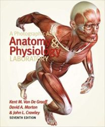 A Photographic Atlas for the Anatomy and Physiology Laboratory pdf