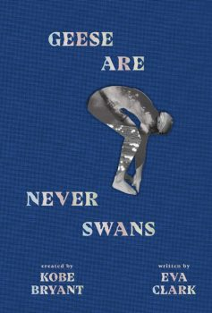 Geese Are Never Swans by Eva Clark PDF
