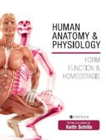 Human Anatomy and Physiology Form Function and Homeostasis PDF