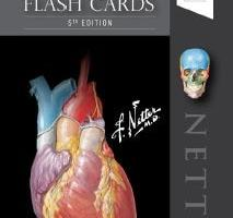 Netter's Anatomy Flash Cards 5th Edition PDF