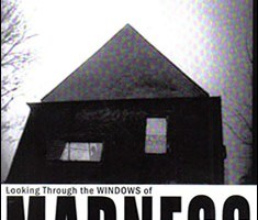 Looking Through the Windows of Madness By Leo Vine-Knight
