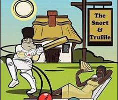 MCC (Muddlecombe Cricket Club) By Paddy O'Farrell
