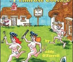 Primrose Cottage By Paddy O'Farrell