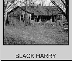 Black Harry By Alim Kanoukoev Pdf