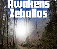 Kundalini Awakens Zeballos By Mallory Wilkins