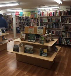 View from the basement entrance of Eagle Harbor Used Book Annex.
