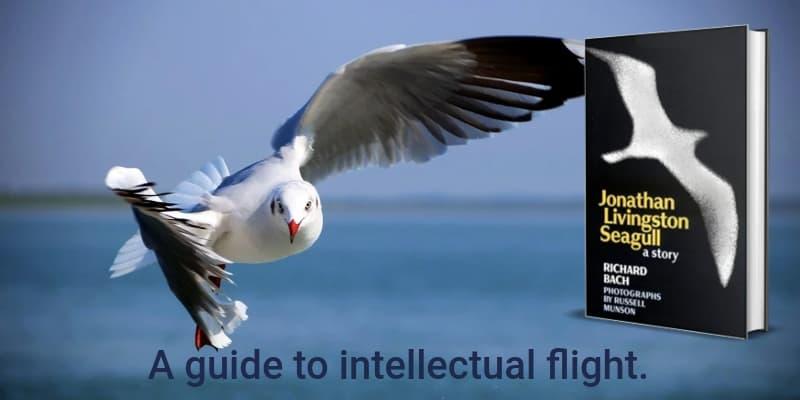 """Jonathan Livingston Seagull"" by Richard Bach (Header image)"