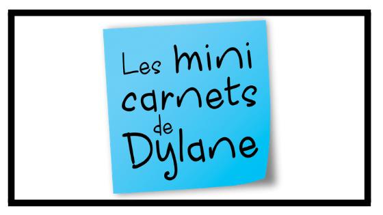 Les mini carnets de Dylane (2)