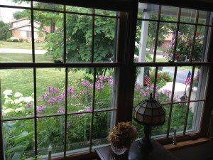 Open Your Windows to New Garden Views