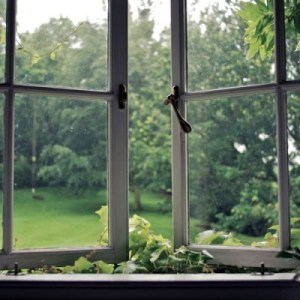 WINDOWS--One Mother's View of Her World