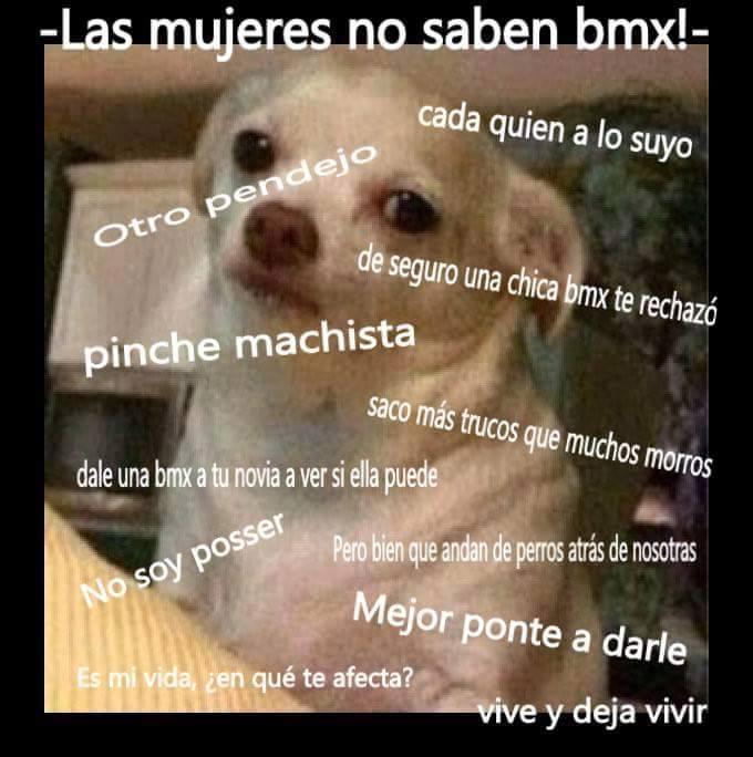 meme bmx 13