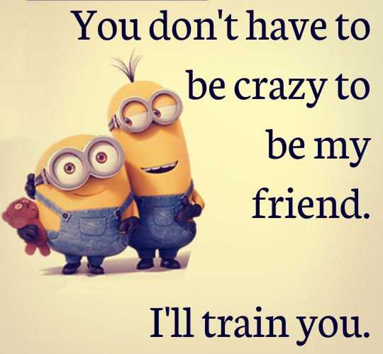 Funny Friendship Quotes You Don't Have To Be Crazy BoomSumo Quotes Inspiration Funny Friendship Quotes