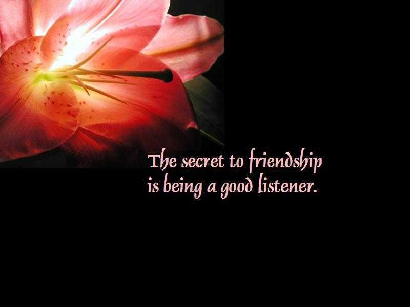 Touching Quotes About Friendship Impressive 21 Heart Touching Friendship Quotes  Boomsumo Quotes