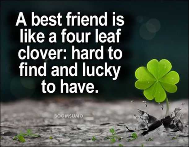Best Friends Forever Quotes About Four Leaf Cute Friend Captions